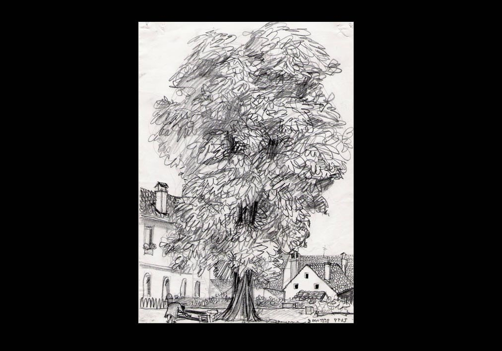 disegni-Ptuj-1998-copia | Francesca Saitta