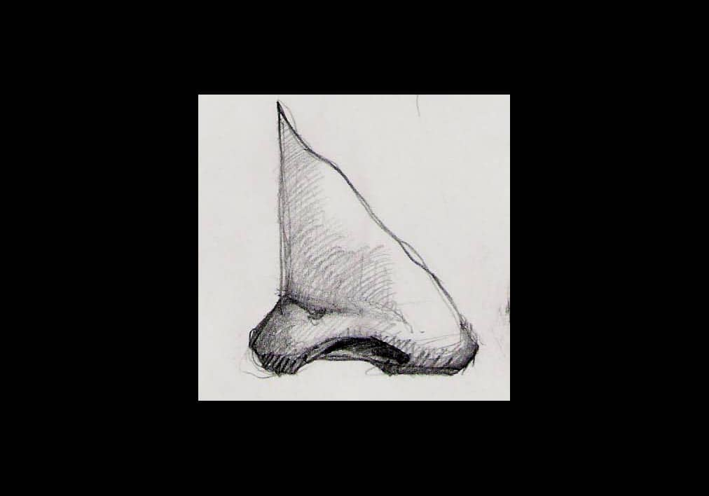 disegni-bisogna-avere-naso-copia